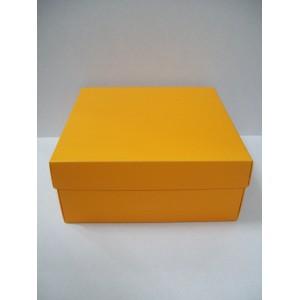 BU 01 Orange