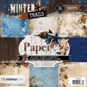 StudioLight PPWT98 6'x6' - Winter Trails Nr 98