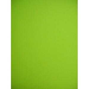 Гладък картон 160 гр. - Зелена ябълка - цвят 46