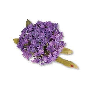 Sizzix 659261 - Flower, Globe Allium
