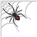 https://uau.bg/7167-11388-thickbox/crafty-ann-bd-131-halloween-set-3-spider-and-web.jpg